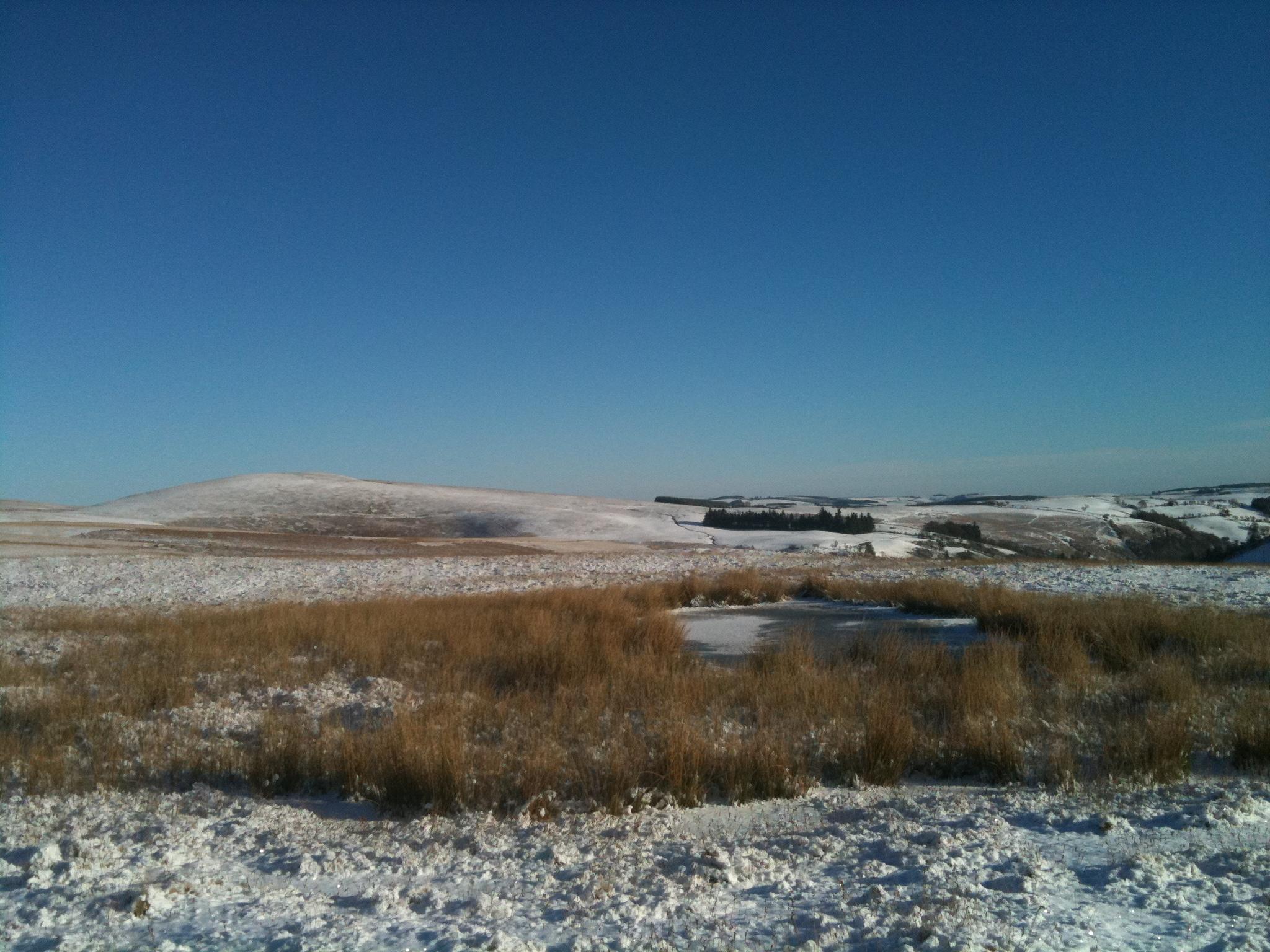 Cilfaesty Hill